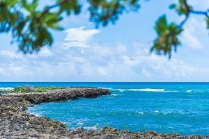 夏威夷2.jpg