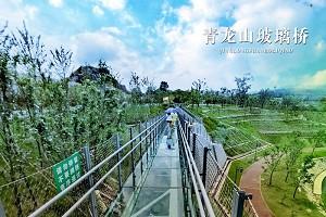 青龙山玻璃桥1.jpg