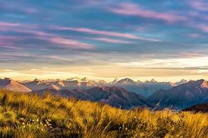 新西兰2.jpg