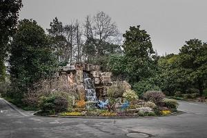 上海植物园1.jpg