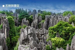 石林风景区1.jpg