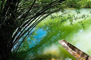 鸳鸯湖1.jpg
