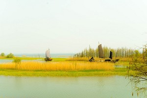 苏州太湖国家湿地公园.jpg