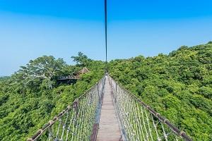 呀诺达热带雨林.jpg
