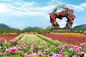 亚龙湾国际玫瑰谷1.jpg