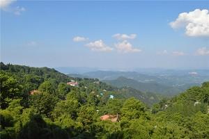 莫干山2.jpg
