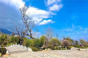苍山公园1.jpg