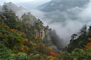 大明山1.jpg